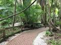 SarasotaJungleGardens8