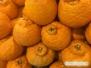 Sumo Citrus