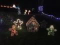ChristmasLightsPalmHarbor1