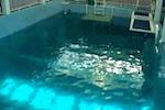 WebCameraClearwaterMarineAquarium