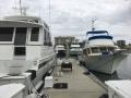 BayfrontBoatShow6