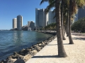 MiamiDowntown12