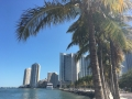 MiamiDowntown13