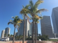 MiamiDowntown14