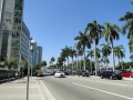 MiamiDowntown4