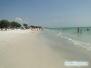 Coquina Beach Anna Maria