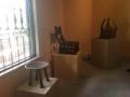 MuseumOfFineArtsStPeteFL3