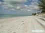 Plaża z muszelkami na Casey Key