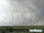 Pożar w Everglades