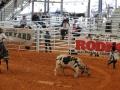 RodeoArcadia10