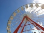 Sarasota County Fair 2015