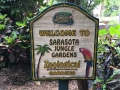 SarasotaJungleGardens48
