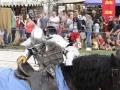 MedievalFair15