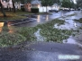 Sarasota po huraganie Irma