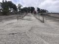 StoneMountainParkGeorgia11
