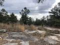 StoneMountainParkGeorgia2