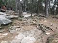 StoneMountainParkGeorgia3