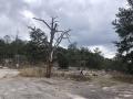 StoneMountainParkGeorgia4