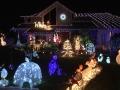 ChristmasLightsPalmHarbor10