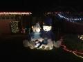 ChristmasLightsPalmHarbor4