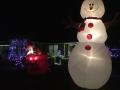 ChristmasLightsPalmHarbor5