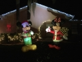 ChristmasLightsPalmHarbor8