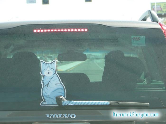 Wycieraczka samochodowa Kot